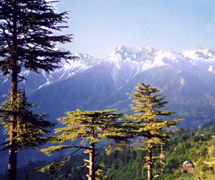 Indian Himalayas view fom my window