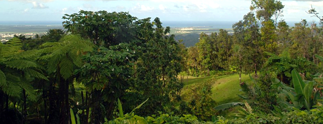 view of the Atlantic from Villa Hermosa vacation rental near el yunque