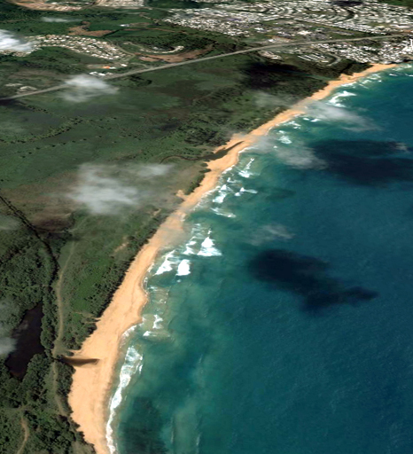 proposal for the ecological corridor of La Selva Beach and turtle nesting site Luquillo in the background