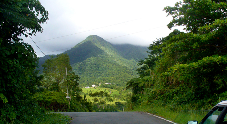 panoramic roads of puerto rico view of picoeste