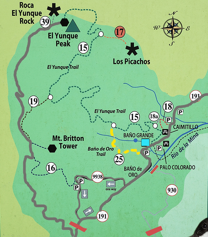 El Yunque rainforest trail map