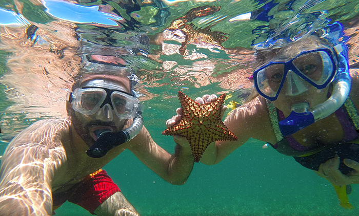 snorkeling in shallow water finding starfish near our kayaks