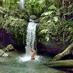 El Yunque rainforest puerto rico waterfall