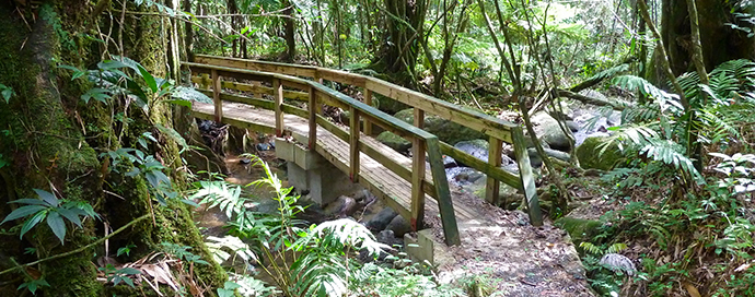 A bridge on the trail to Angelito