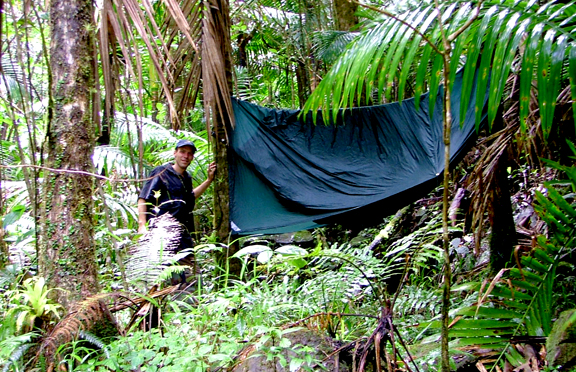 hammock tents work really well in the rain forest