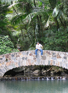 el yunque rain forest bridge at bano de oro