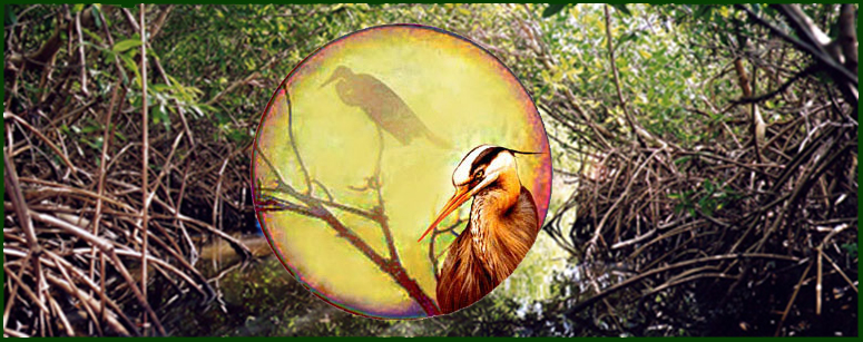 Fairy tale legend of the golden heron