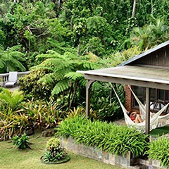 Places to stay near the rainforest, el yunque lodging