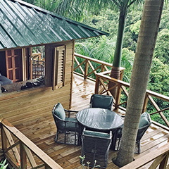 rainforest treehouses, villa rentals, health and wellness center near el yunque