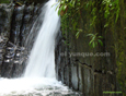 picture of waterfall puerto rico