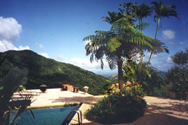 Casa Flamboyant Bed and breakfast Puerto Rico rain forest