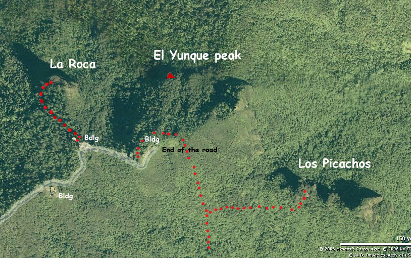 The peaks of el Yunque rainforest